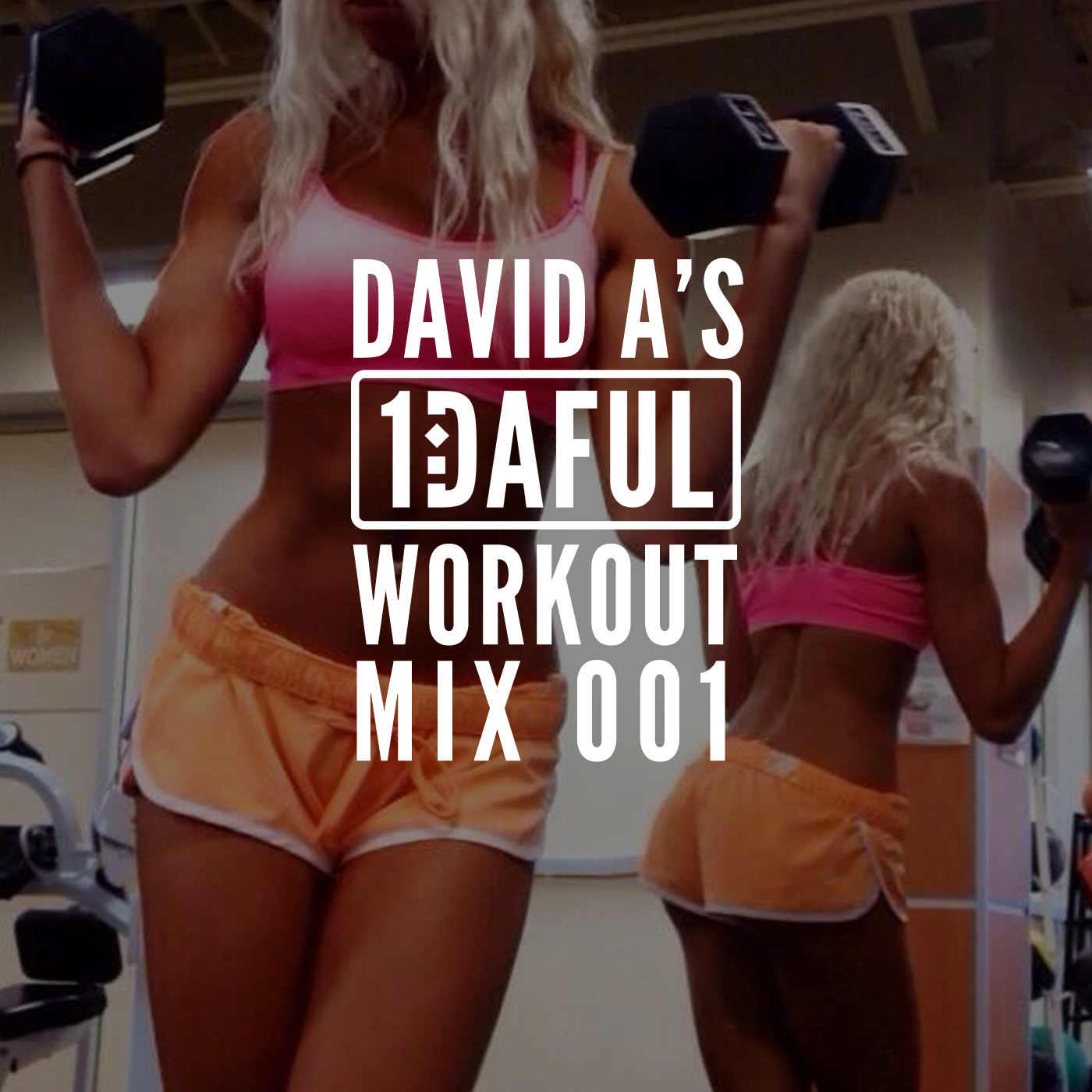 David A's 1DAFUL Workout Mix